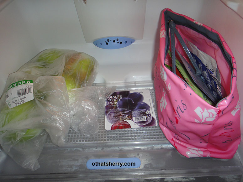 "Arrival: my empty fridge looked quite depressing with only apples and face masks, ""Mom~~~~"""